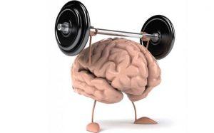 Intelligen Brain – commenti – ingredienti – erboristeria – come si usa – composizione
